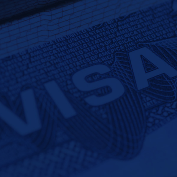 Visa and Labour Cards processed